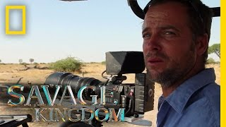Download Witness to a Warthog Kill | Savage Kingdom Video