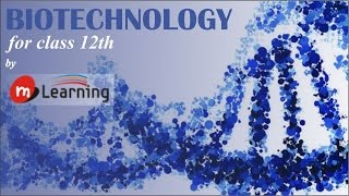 Download BIOTECHNOLOGY: INTRODUCTION - 01/07 Video