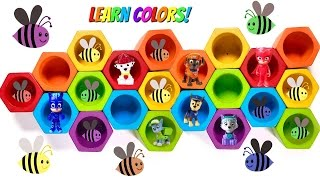 Download Preschool Paw Patrol Toys Bee Hives Toy Video