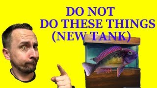 Download Setting up a new tank - Getting a tank   Jay Wilson Video