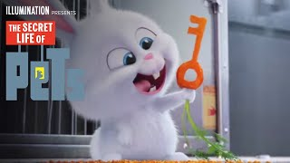 Download The Secret Life of Pets - Kevin Hart Is Snowball (HD) - Illumination Video