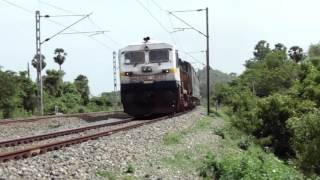 Download Butterflies movement disrupted by Train | Indian Railway | Cholan Express Video