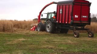Download Switchgrass Biomass Harvest Video