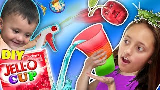 Download DIY JELLO CUPS! Edible Glasses Kids Recipe! + Cherry Pit Fruit Launcher! (FUNnel Vision Random Vlog) Video