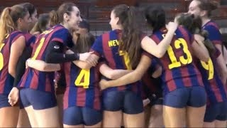 Download The Beauty of Women's Indoor Volleyball Video