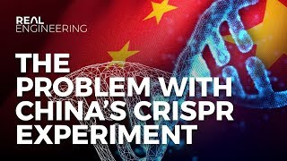 Download Designer Babies - The Problem With China's CRISPR Experiment Video