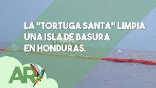 "Download La ""tortuga santa"" limpia una isla de basura en Honduras Video"