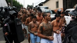 Download What is MS-13? Video