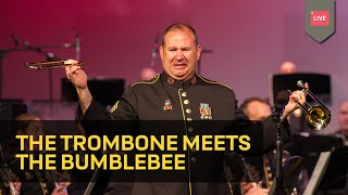 Download The Trombone Meets The Bumblebee Video