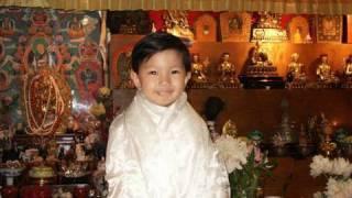 Download Young Monk & Future Tibetan Spiritual Leader, Asanga Rinpoche Video