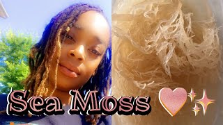 Download HOW TO MAKE SEA MOSS GEL || Dr. Sebi Approved!! Video