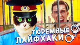 Download Лайфхаки для ТЮРЬМЫ SlivkiShow | Николай Соболев, Павлов Video