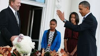 Download Obama's corny White House turkey pardons Video