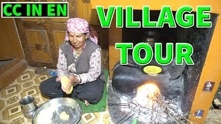 Download Shimla, Himachal Pradesh village Tour India: Naldehra, Tattapani Video