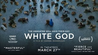 Download White God - Official Trailer Video