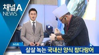 Download 국내산 양식 참다랑어까지…2만 명 찾은 씨팜쇼 Video