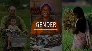 Download FAO Policy Series: Gender Video