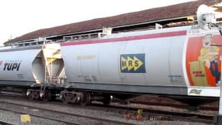 Download MRS Saida de vários trens tipo . Video
