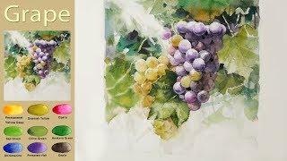 Download Fruit Landscape Watercolor - Grape.(wet-in-wet, Arches rough) NAMIL ART Video