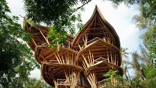 Download Magical houses, made of bamboo | Elora Hardy Video