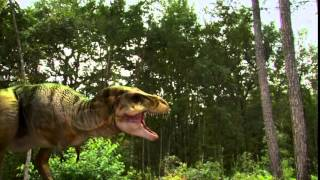 Download T-rex walks again documentery by National Geographic Channel Video