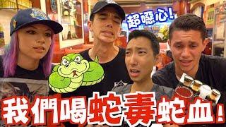 Download 美國知名Youtubers初次體驗台灣美食!他們竟然喝蛇血蛇毒?!【劉沛 VLOG】 Video