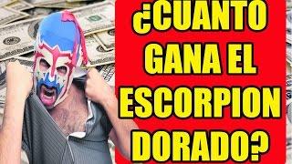 Download ¿CUANTO GANAN LOS YOUTUBERS?   EL ESCORPION DORADO   YUTUBEROS Video