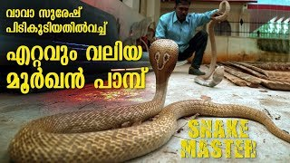 Download Wow ! Vava Suresh rescues Largest Cobra ever   Snakemaster   Latest episode Video