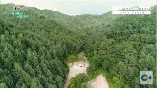 Download 살만한 오지 마을! 20년차 부부도 신혼처럼 살게하는 숲 속 라이프 Video