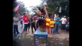 Download keblak'' macan mabok Barong kemiren part 2 Video