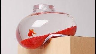 Download Creative Aquariums HD Video