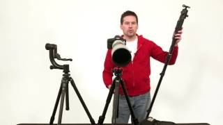 Download Wildlife Photography Equipment: Tripod Heads Video