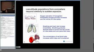 Download Human Evolution and Adaptation to High-altitude - Cynthia Beall Video
