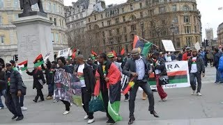 Download Biafra: IPOB Confront UK Police in London Video