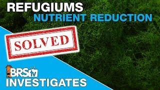 Download Testing Refugium Part III : Taking Chaeto to the Next Level | BRStv Investigates Video