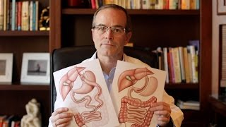 Download Gastric Bypass or Sleeve? Video