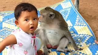 Download Good relationship betweeen poor monkey Sok and cute baby Video