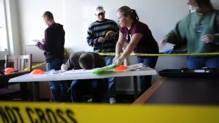 Download Criminal Investigation Class Video