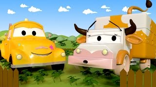 Download Tom The Tow Truck's Paint Shop: Amber is a Cow 🐮🐄 | Truck cartoons for kids Video
