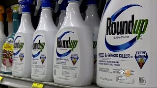 Download San Francisco Jury Orders Monsanto to Pay $289 Million to School Groundskeeper Video