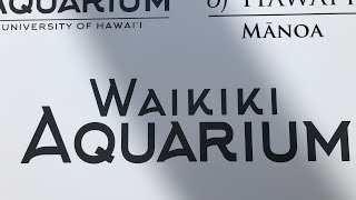 Download Waikiki Aquarium Tour Video
