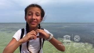 Download Madison #MyOceanPledge Belize Barrier Reef System World Heritage marine site Video