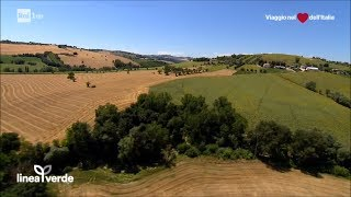 Download Sorvolando le Marche - Linea Verde Estate 30/07/2017 Video