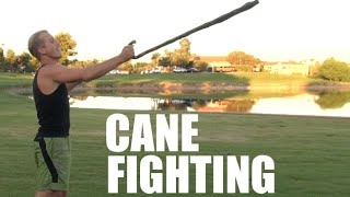 Download Fighting with a Walking Cane Video