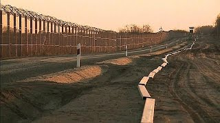 Download Hungary plans new border fence to stop migrants Video