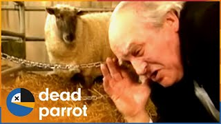 Download ″Chirpy Burpy Cheap Sheep″ | Father Ted | Series 3 Episode 2 | Dead Parrot Video