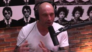 Download Sam Harris' Dissection Of Donald Trump (from Joe Rogan Experience #804) Video