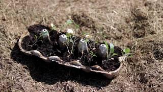 Download Przygotowanie gleby pod warzywa Video