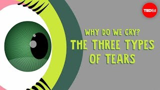 Download Why do we cry? The three types of tears - Alex Gendler Video