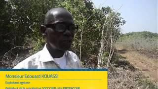 Download Interview de Monsieur Edouard KOUASSI, Exploitant agricole, Président SOCOORIB (PROPACOM) Video